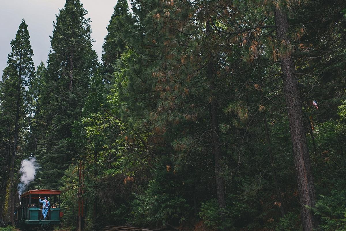 Yosemite Wedding Photographer_051
