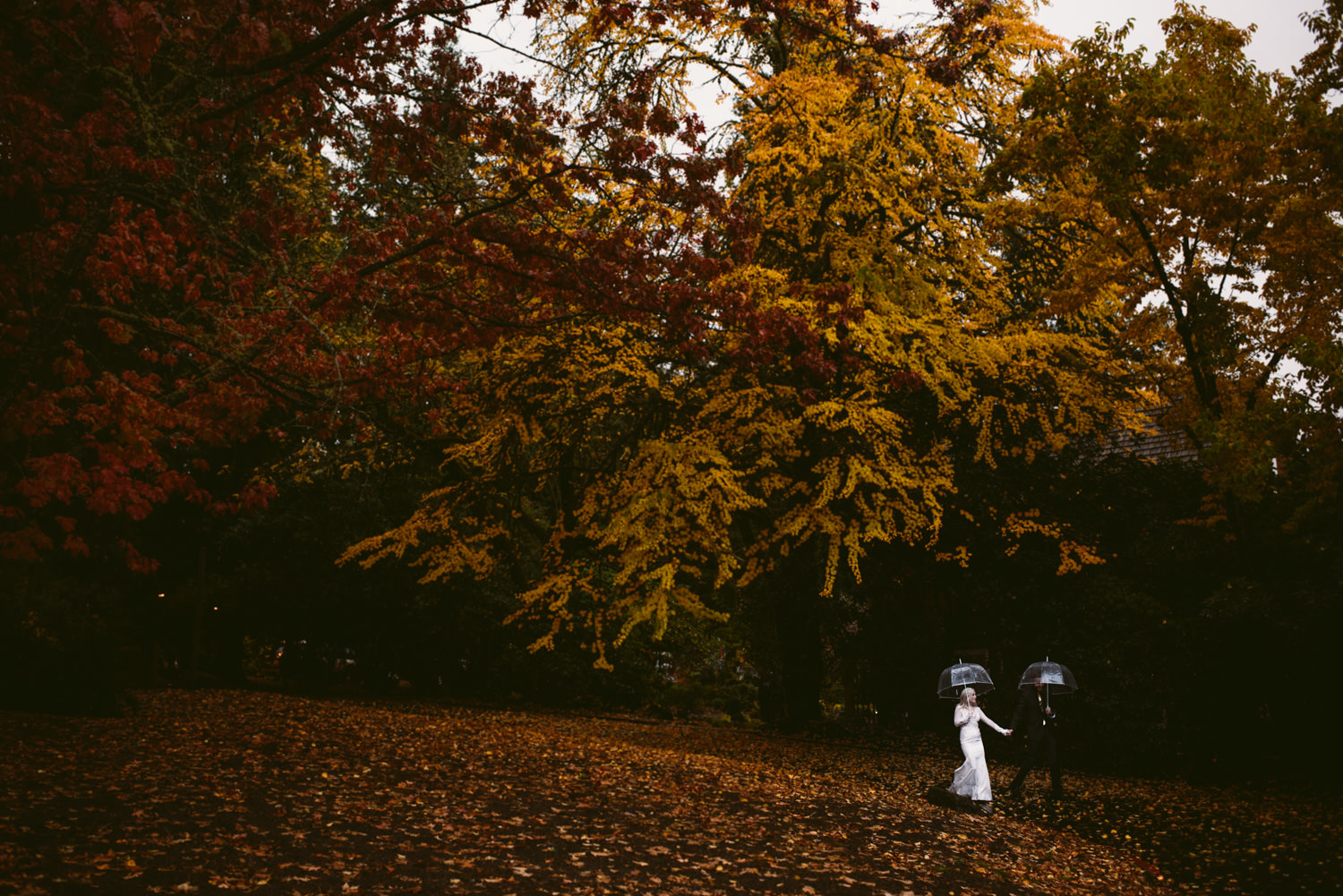 autumn seattle wedding - Best LA Wedding Photography